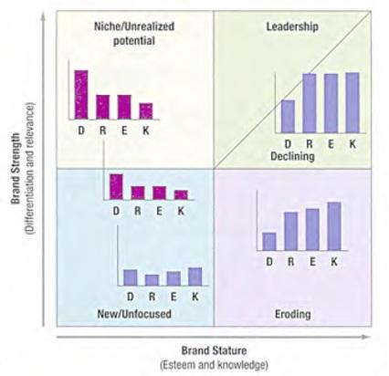 Brand Asset Valuator (BAV Model)
